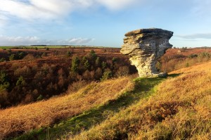 Bridestones, North York Moors mat robinson