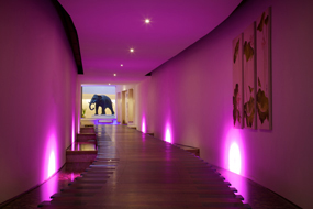 seaham hall spa elephant