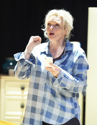 sharon small interview still alice stage