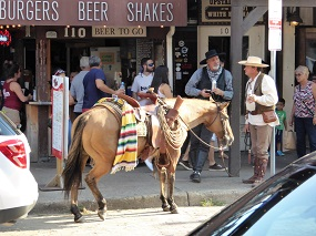 texas travel review Fort Worth