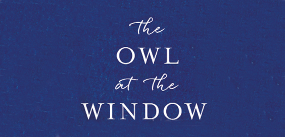 the owl at the window book review carl gorham