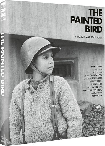 the painted bird film review cover