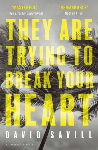 they are trying to break your heart review cover