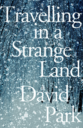 travelling in a strange land david park book review cover