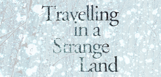 travelling in a strange land david park book review logo