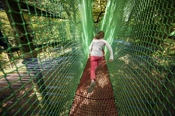 treetop nets ripon review 1