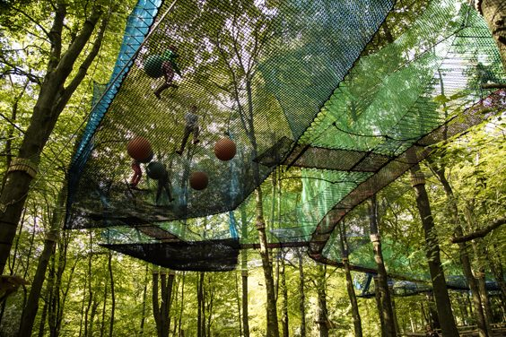 treetop nets ripon review 3