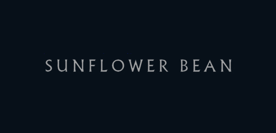 twentytwo in blue senflower bean album review logo