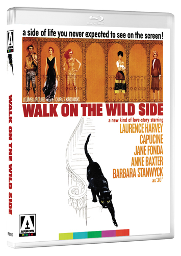 walk on the wild side film review cover