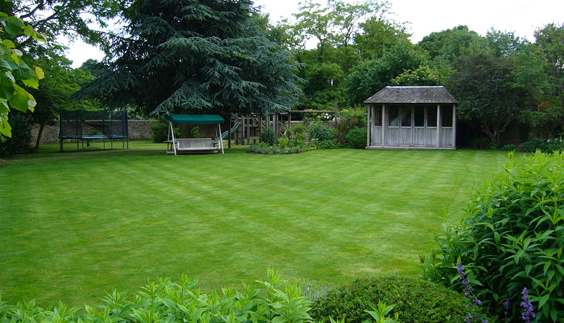 winter lawn how to look after