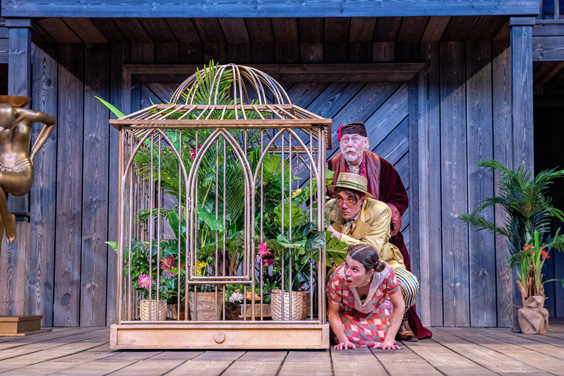 twelfth night review shakespeares rose theatre july 2019 farce